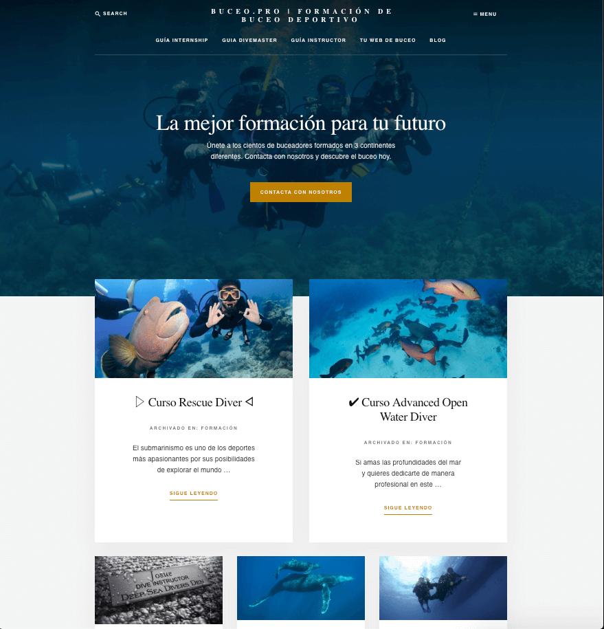 diseño web buceo Toledo